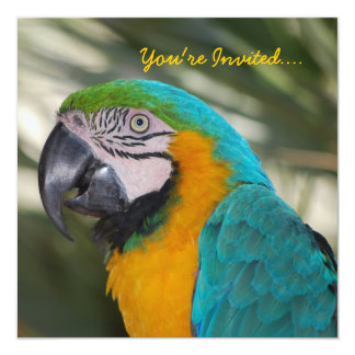 Parrot Party Invitation
