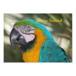 Parrot Party Invitation