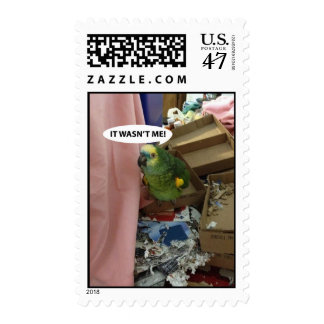Parrot playing innocent postage stamp