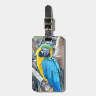 Parrot Portrait Bag Tag