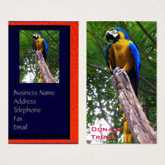Parrot Pose ~ Business Card