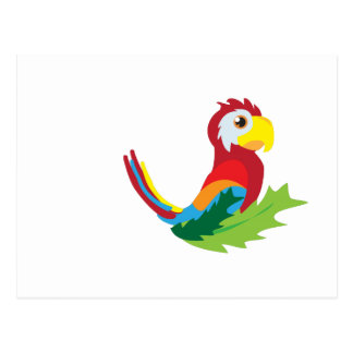 Parrot Post Card