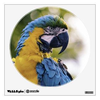Parrot Profile Portrait Photograph Wall Sticker