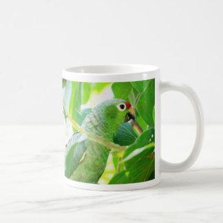 Parrot, Rio Chagres, Panama Classic White Coffee Mug