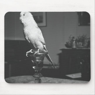 Parrot sitting on candlestick B&W Mouse Pad