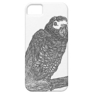 Parrot Sketch iPhone 5 Cover