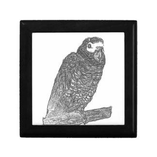Parrot Sketch Jewelry Box