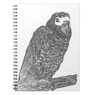 Parrot Sketch Notebooks