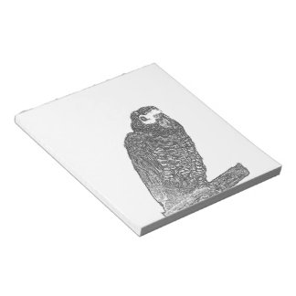 Parrot Sketch Note Pad