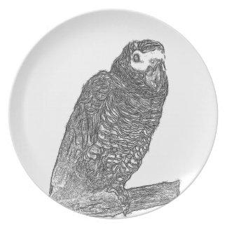 Parrot Sketch Plates
