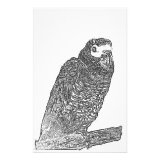 Parrot Sketch Customized Stationery