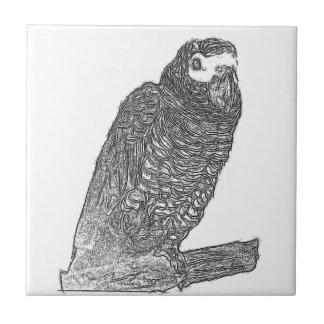 Parrot Sketch Ceramic Tiles
