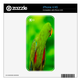 Parrot Decal For iPhone 4S