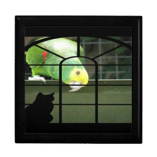 Parrot Spots Cat Keepsake Box