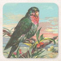 Parrot Square Paper Coaster