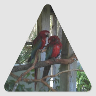 Parrot Triangle Sticker
