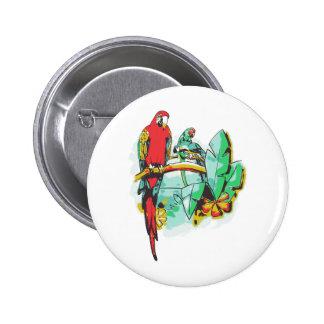 Parrot Trio Pinback Button