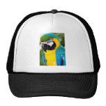 Parrot Trucker Kepsar