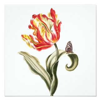"""Parrot Tulip Flower Butterfly Watercolor 5.25"""" Square Invitation Card"""