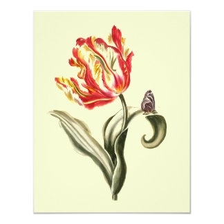 """Parrot Tulip Flower Butterfly Watercolor 4.25"""" X 5.5"""" Invitation Card"""