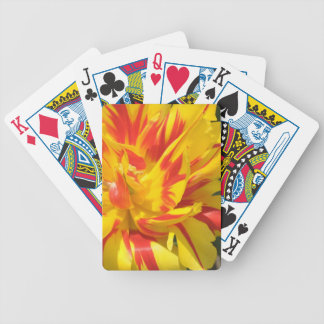Parrot Tulip Bicycle Poker Deck