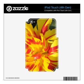 Parrot Tulip Skin For iPod Touch 4G