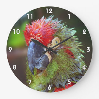 Parrot Wall Clocks