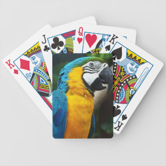 PARROT WILD BIRDS TROPIAL WILDLIFE COLORFUL DIGITA BICYCLE PLAYING CARDS