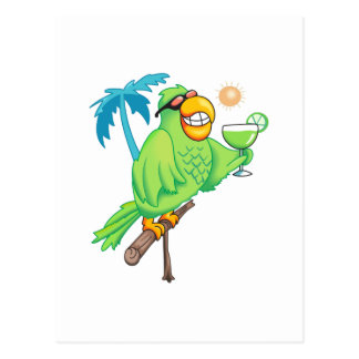 PARROT WITH MARGARITA POSTCARD
