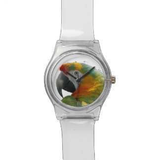 Parrot Wrist Watch