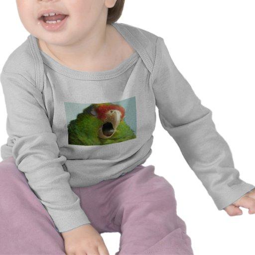 parrot yawning shirts