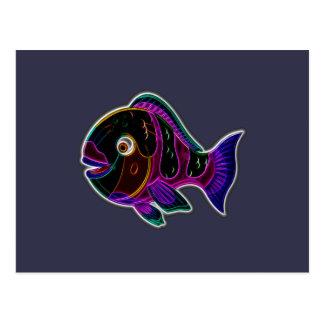 Parrotfish Postcard