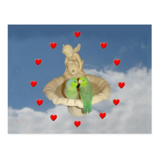 Parrotlet Bird fountain Valentine Postcard