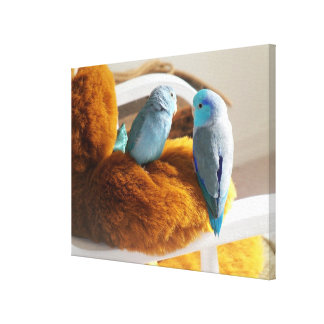 Parrotlet Bird Teddy Bear Baby Sitter Canvas Art