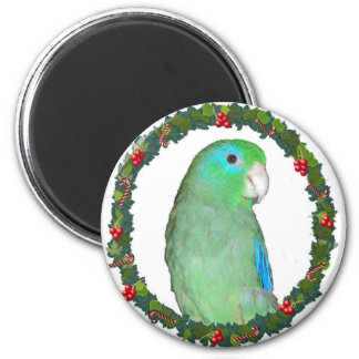Parrotlet Christmas wreath Refrigerator Magnet
