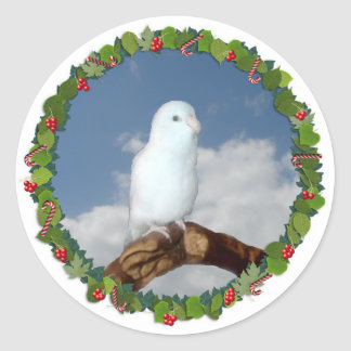Parrotlet Christmas Wreath Stickers