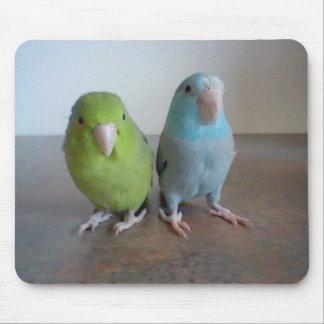Parrotlet Mousepad