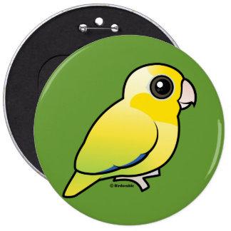 Parrotlet pacífico amarillo pin