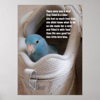 Parrotlet pacífico azul del pequeño pájaro en un póster