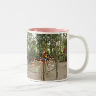 Parrots and flamingos hang out at water spot coffee mugs