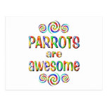 PARROTS ARE AWESOME POSTCARD