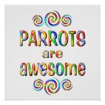 PARROTS ARE AWESOME POSTER