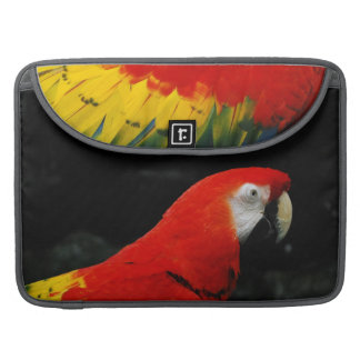 Parrots Birds Tropical Pattern Colorful Art Safari Sleeve For MacBook Pro