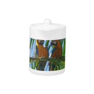 Parrots- Blue and Gold Macaws Teapot