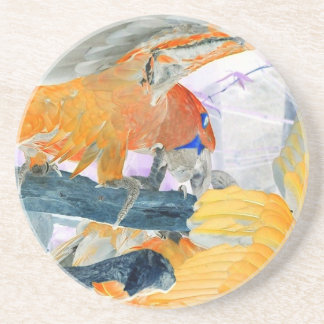 Parrots fighting inverted to orange and white beverage coasters