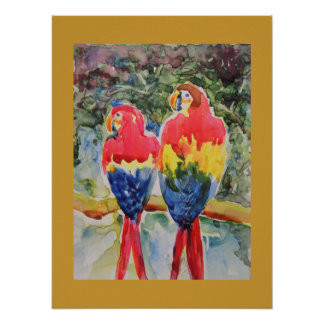 Parrots in the Rain Forest Poster