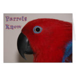 Parrots Know Greeting Card