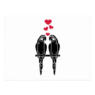 Parrots love red hearts postcard