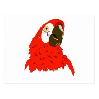 Parrot's lover postcard