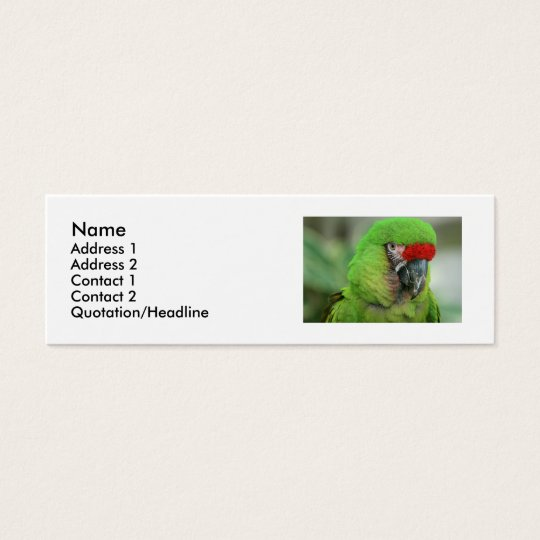 Parrots of the Caribbean Part Two Mini Business Card